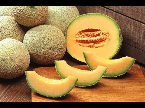 Seasonal Fruit Musk Melon for sale