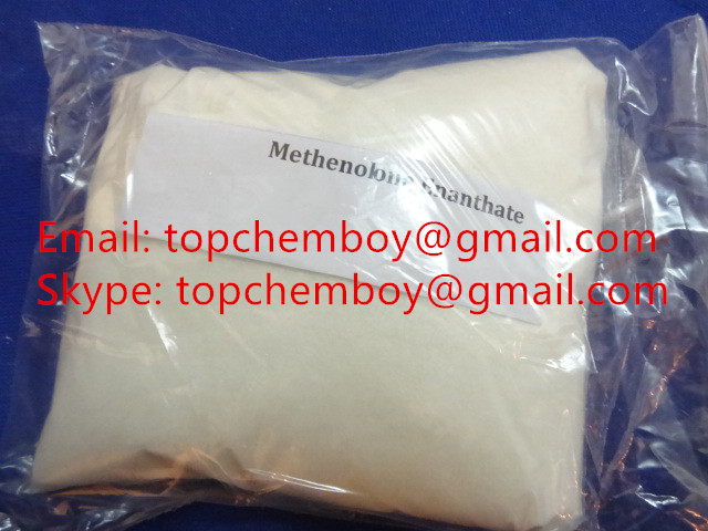 Primobolan Methenolone Enanthate Steroid Hormone