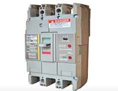 Earth Leakage Breakers Economical Type DBE-C Series