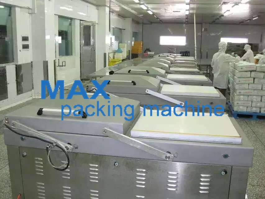 Vacuum Packing Machine MAX-950