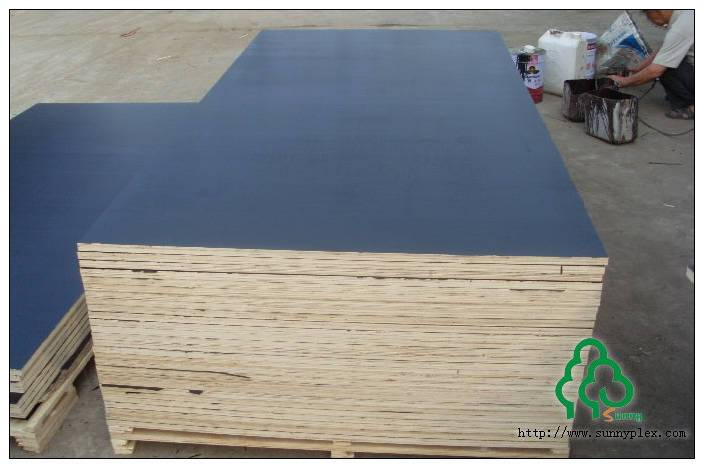 High quality wbp glue black/brown/red film faced plywood
