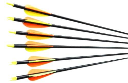 6x 31''hunting Archery Arrows Target Practice Fiberglass with Changeable Point