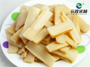 Edible Organic Bamboo Shoot