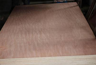plywood prices packing plywood commercial plywood