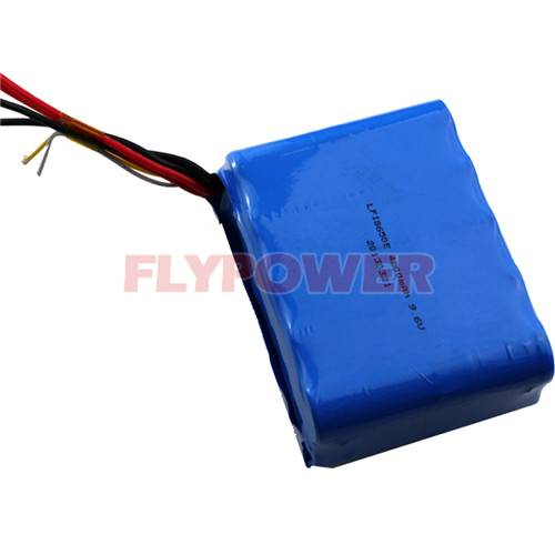 9.6V 4200mAh LiFePO4 Battery Pack (3S3P of FLFC-18650E with PCM)
