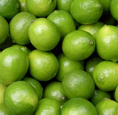 Lime Fresh Indonesia