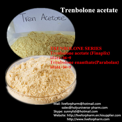 99% Quality Trenbolonee Acetate/Yellow Tren/CAS10161-34-9
