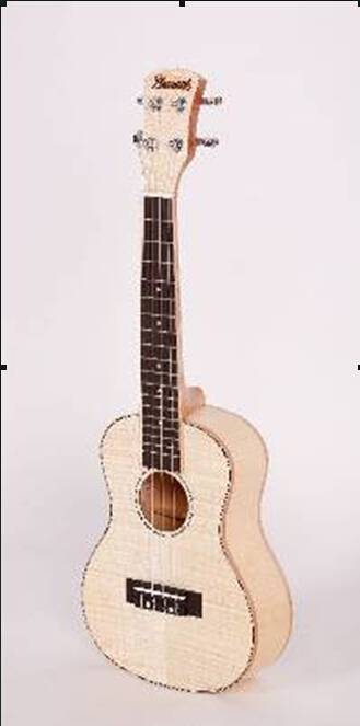 hdy13 new style popular wooden 23'' ukulele free shipment violin