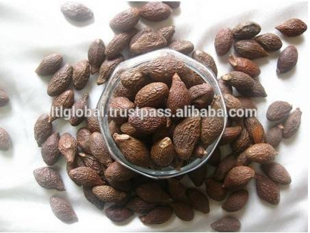 MALVA NUT HIGH QUALITY FROM VIET NAM