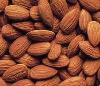 Sweet Almond Kernel Nut in Shell in Stock