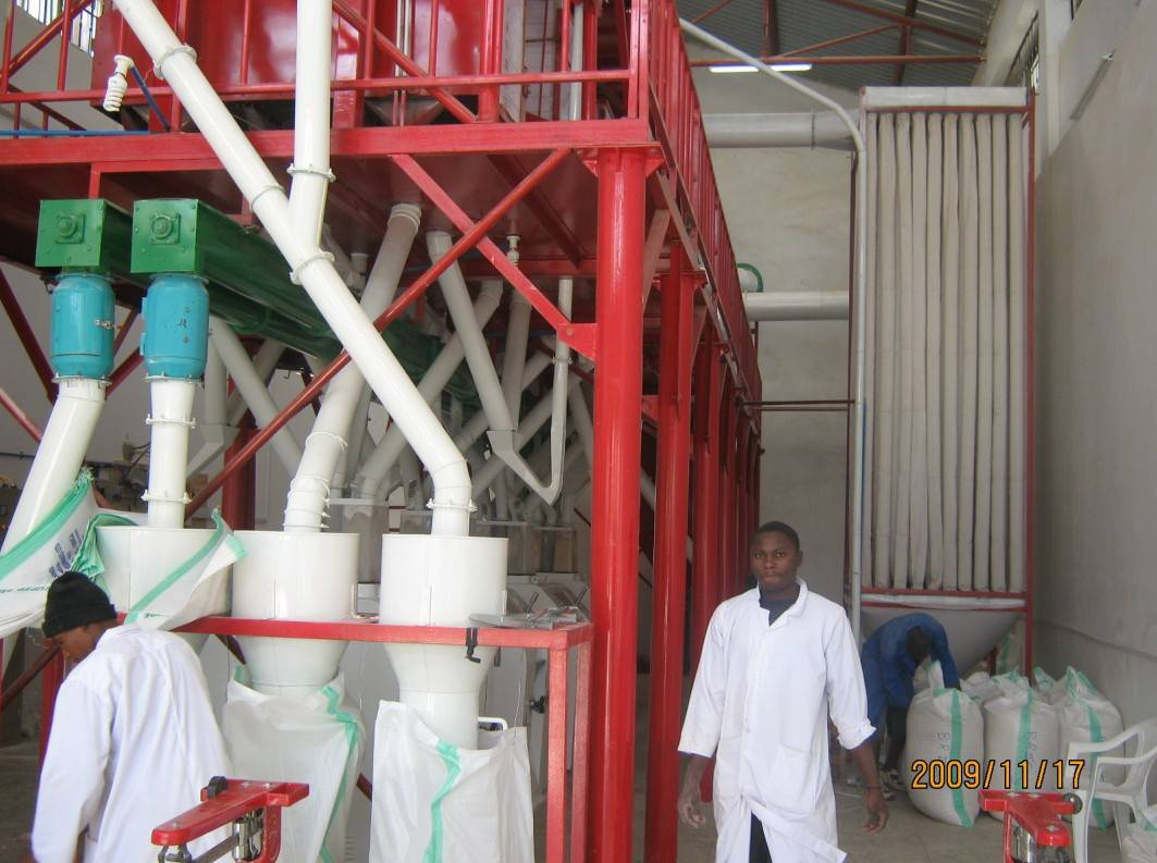 50mt per day maize grinding machinery