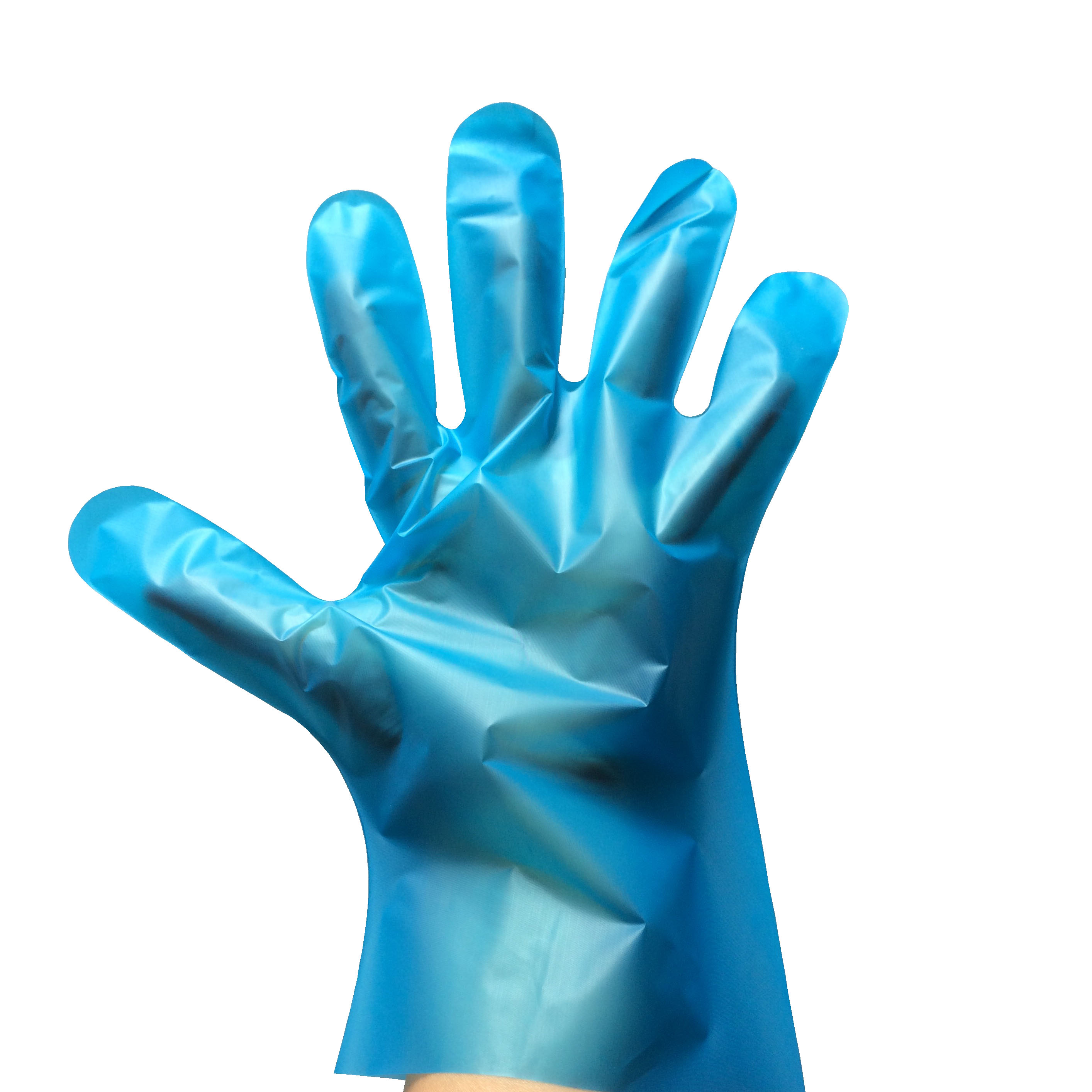 Synthetic Silky Exam, Blue, Powdered Free