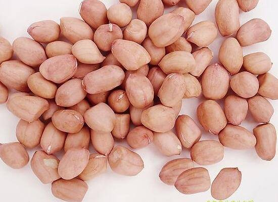 China Homegrown Fresh Peanuts with Non-pollution Non Aflatoxin Content for Sale