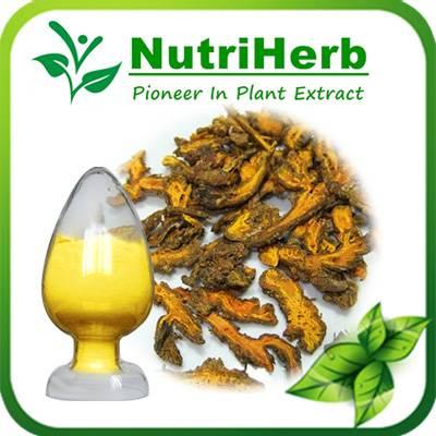 Natural Berberine Powder,Berberine HCL