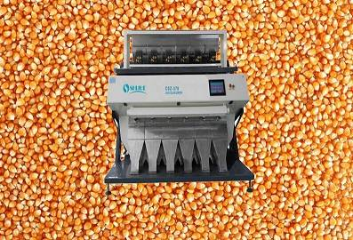 Excellent quality hot sell Corn Color Sorter with Compretitive price