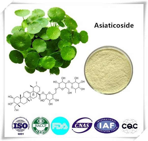 Asiaticoside  50% CAS NO:16830-15-2 1kg/bag