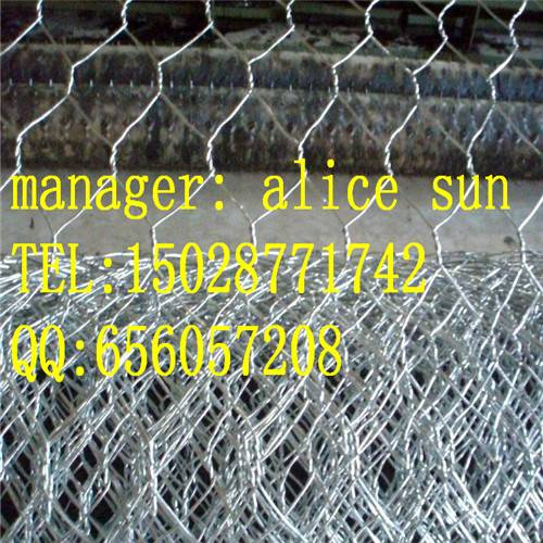 hexagonal wire netting|chicken wire netting|poultry netting