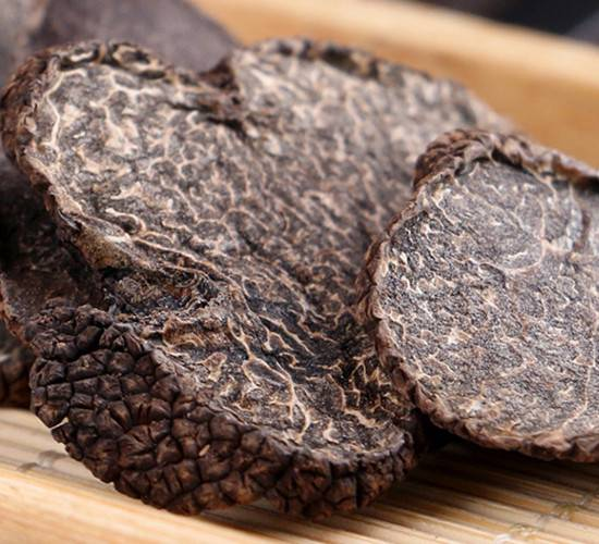 Black truffle tuber melanosporum perigord truffle