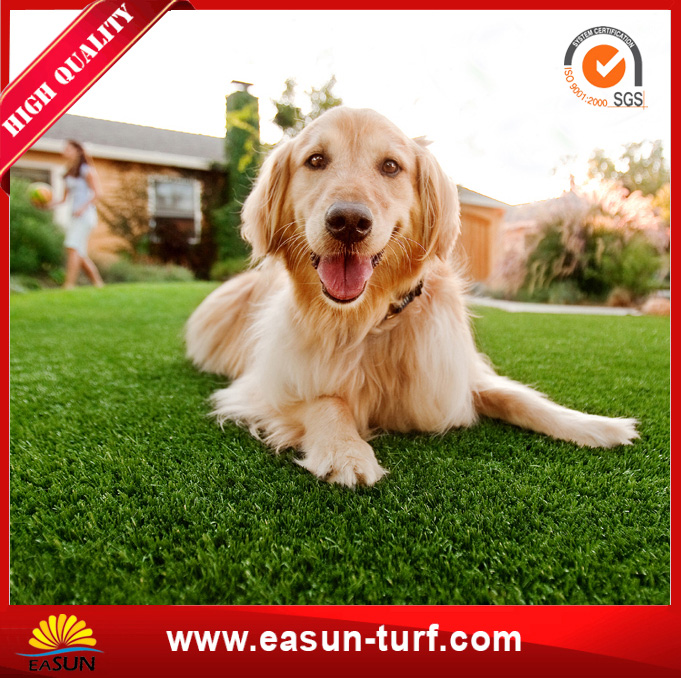 Soft Synthetic Artificial Grass Turf for Home Decoration-MY