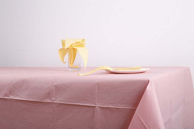 Hot selling factory direct sales paper tablecloth paper table napkins