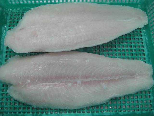 PANGASIUS WELLTRIMMED