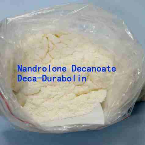 Nandrolone decanoate deca anabolic steroids