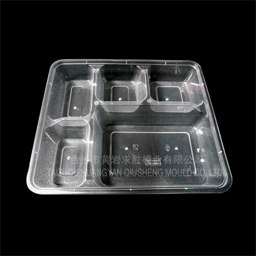 PP plastic 5 grid disposable quick boxes plastic mould
