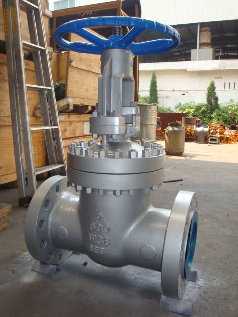 Cast steel gate globe valve