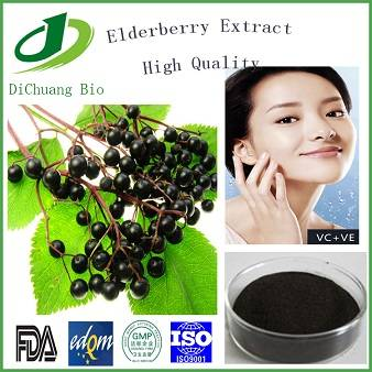 100% Natural Elderberry Extract Anthocyanidin