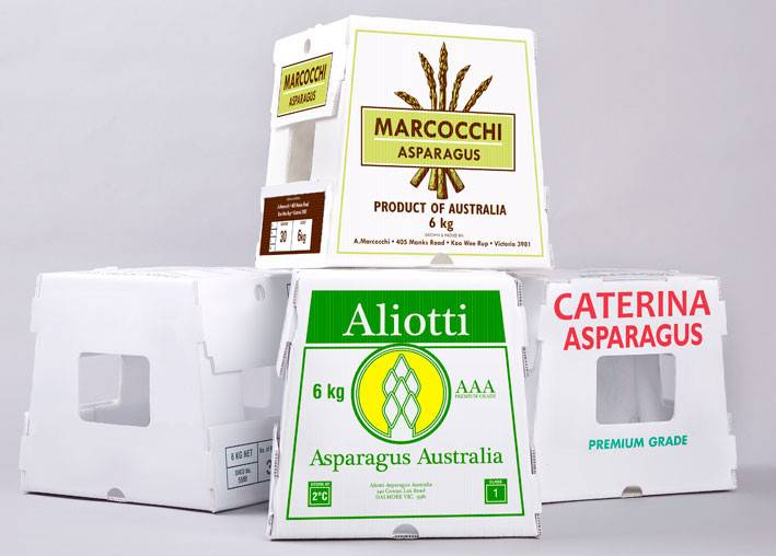 5kg pp corrugated plastic fresh asparagus box