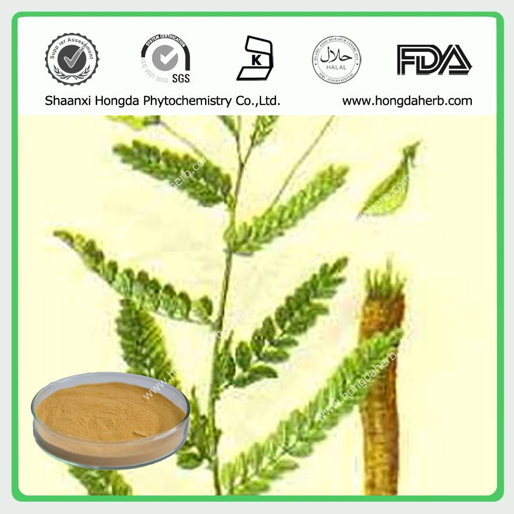 Astragalus Root /Milkvetch Root Extract 100%pure powder Astragaloside 0.3%-98%
