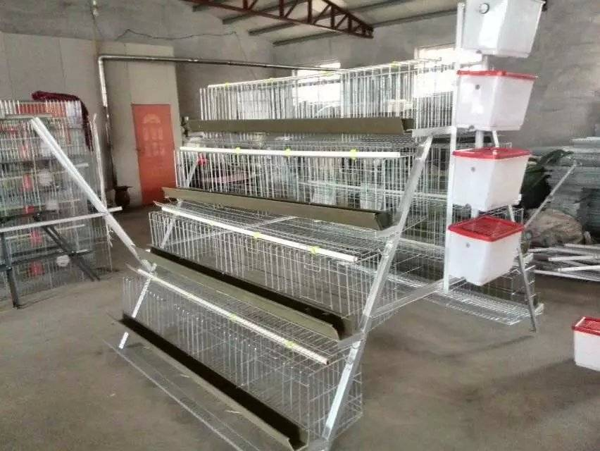 layer chicken cage