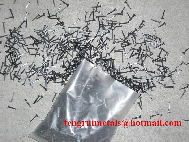 Fine blue shoe tack nails for export
