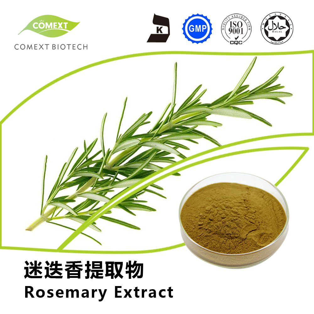 Carosic Acid 5%~60% Powder Rosemary Extract