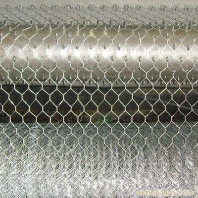Manufacturer Hot dipped Galvanized Hexagonal wire mesh