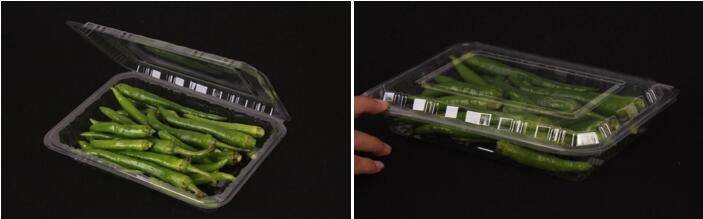 Transparent Plastic Clamshell Packaging Food Grade