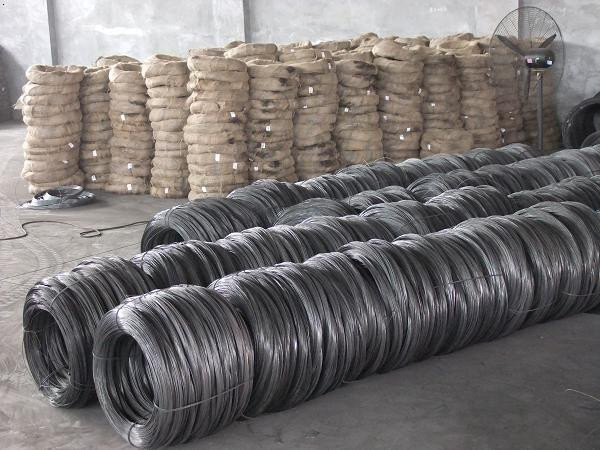 Oil Black Iron Binding Wire Roll & Black Annealed Wire