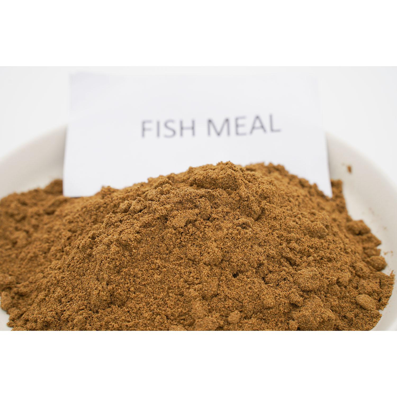 fish meal animal feed