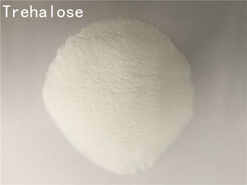Sweetener,Food Additive,Food Fresh keeping,Chewing Gum Bases,Thickeners,Moisturizing