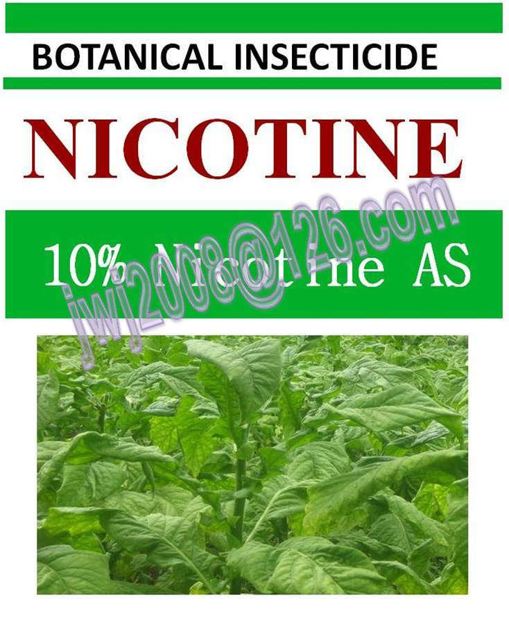 10% Nicotine AS, biopesticide, botanic insecticide, natural