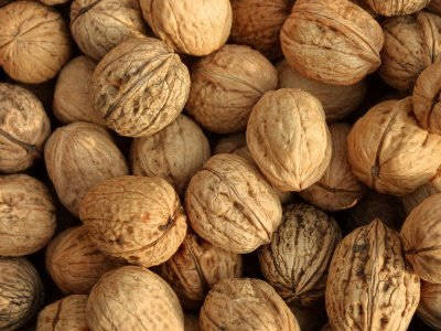 High Quality Walnut and Walnut Kernel for sale at very good prices