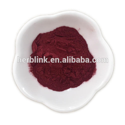 Aronia extract 1%-25% anthocyanidins