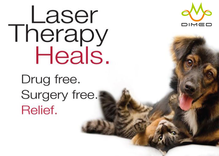 Laser therapy for treating post surgical pain and many acute and chronic conditions