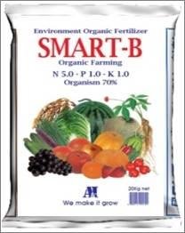 SMART B