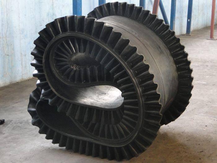 Annular Conveyer Belt