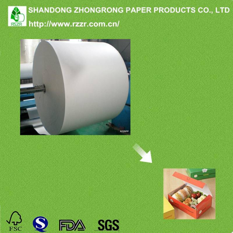 PE coated paper for lunch box