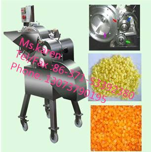 Fruit vegetable dicing machine/ fruit vegetable dicer/fruit vegetable chopper machine