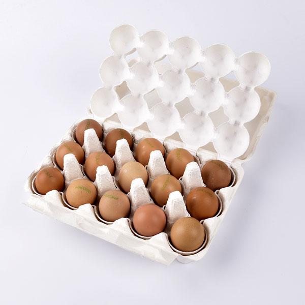 alfix egg protective gear for eggs parcel service