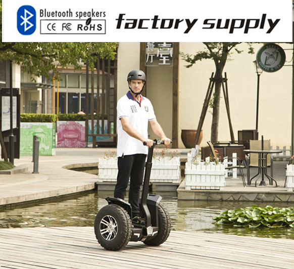 Chic/ City Scooter/Adjustable Two-Wheel Scooter/ Electric Scooter Hoverboard