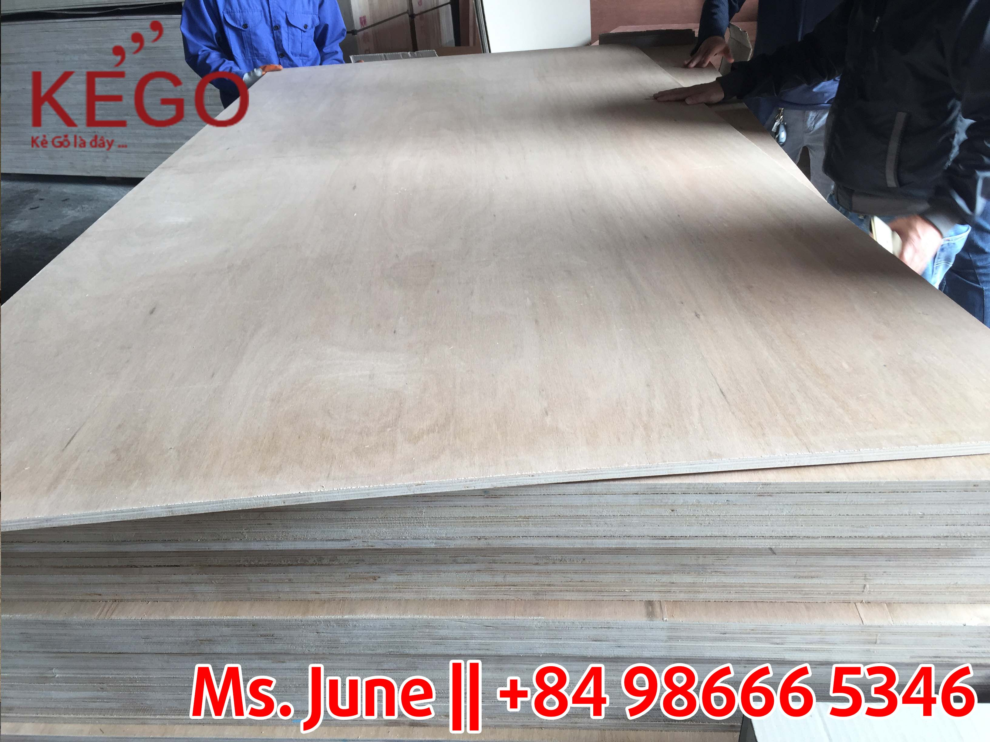 Packing plywood 122024404.6mm grade BC